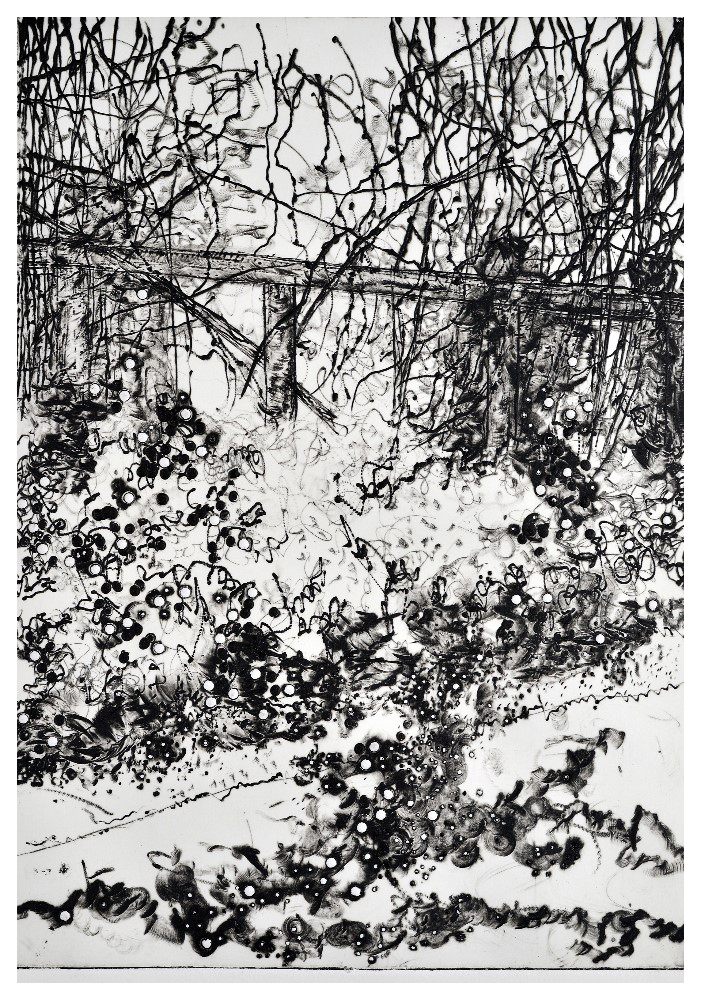 'April May' (21 x 29cm, drypoint, 2016) SOLD ed 1/50, 49 available