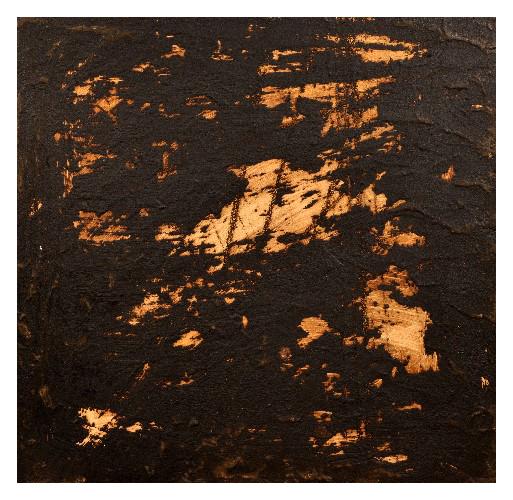 'Mastic' (59 x 59cm, acrylic & mixed media on wood, 2007) £650